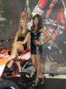 Hostess EICMA 2011-11
